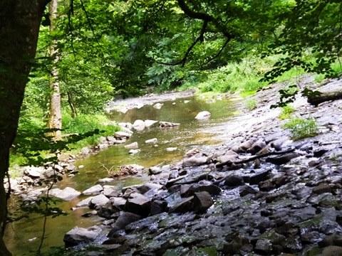 Gorges de la Bouble Chantelle nature paysage Abbaye